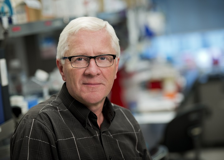 Head shot of John Dick, senior scientist at Princess Margaret Cancer Centre at University Health Network and a professor in the Department of Molecular Genetics