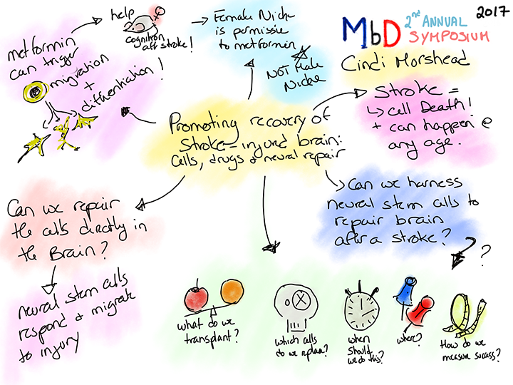 Cindi Morshead talk drawing