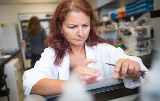 Dr. Phyllis Billia, Researcher
