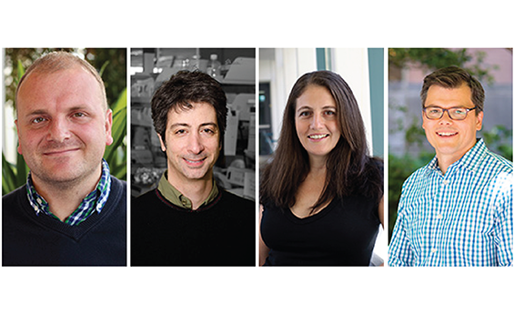 Four funded researchers